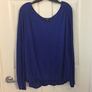 (EUC) 22/24 Pretty Blue Long Sleeve Top by LB